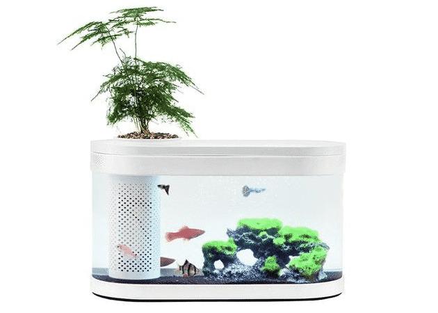Xiaomi Aquarium Portabal atau Fish Tank