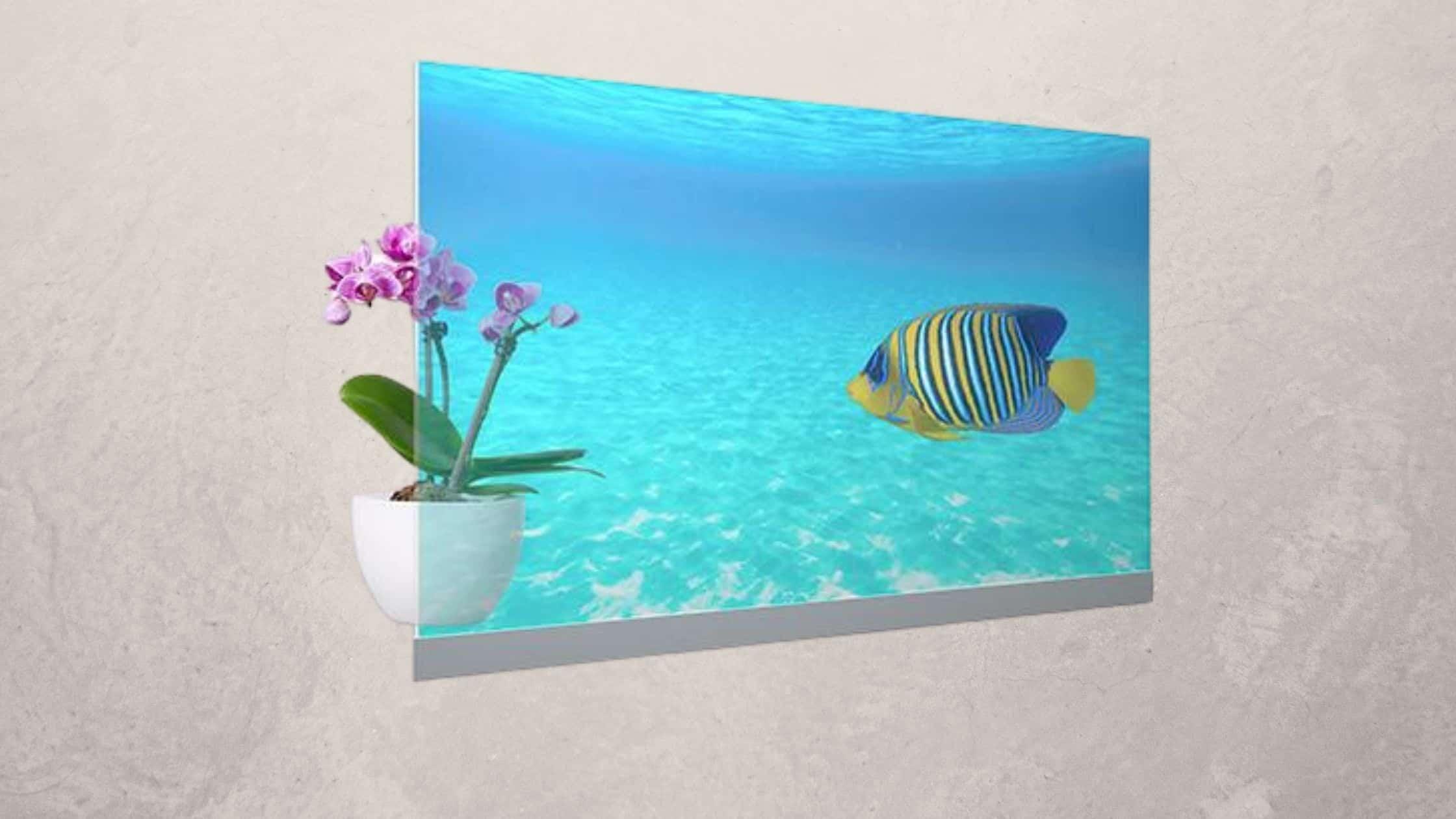 Layar OLED Transparan Panasonic