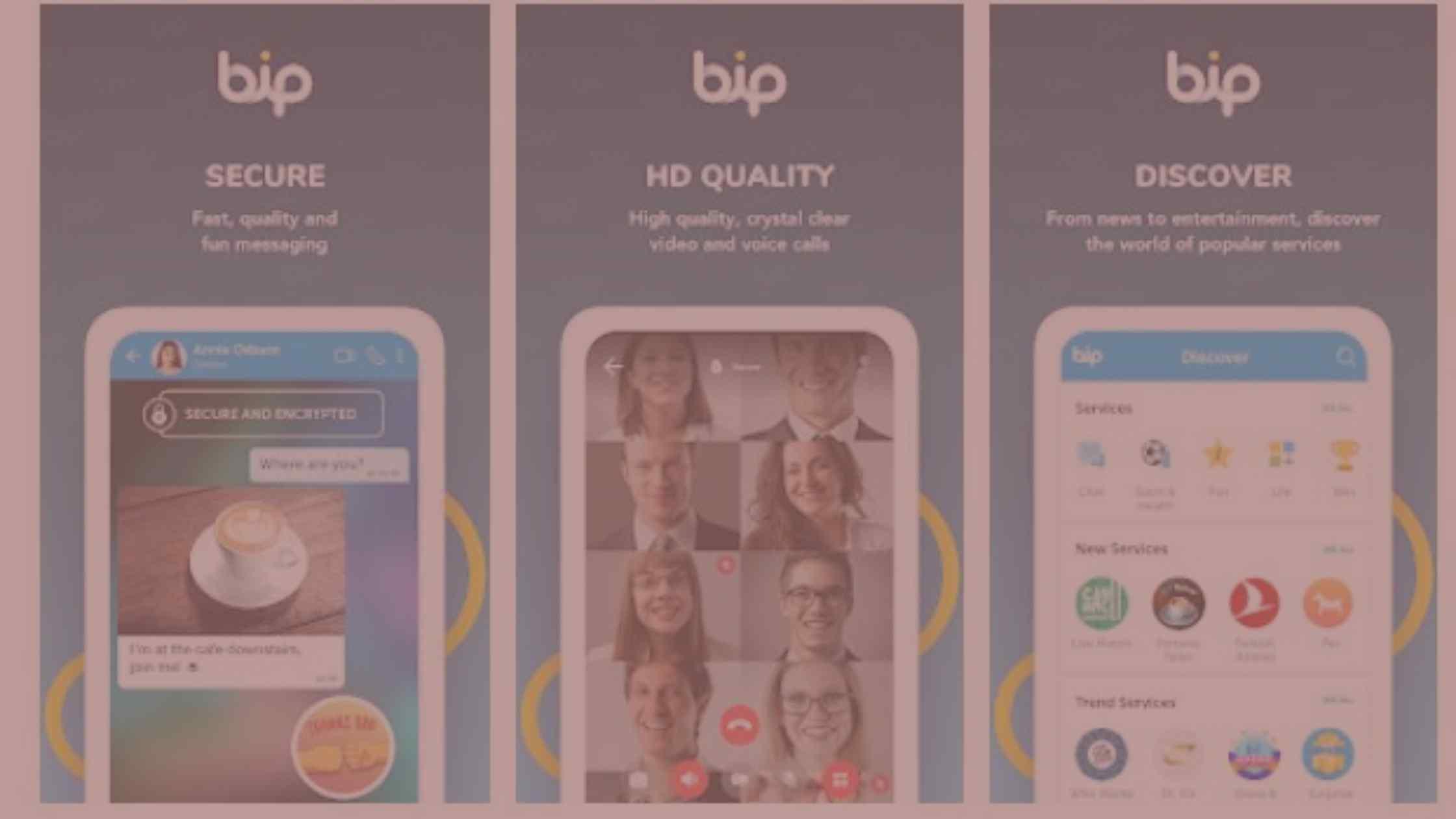 Aplikasi BIP