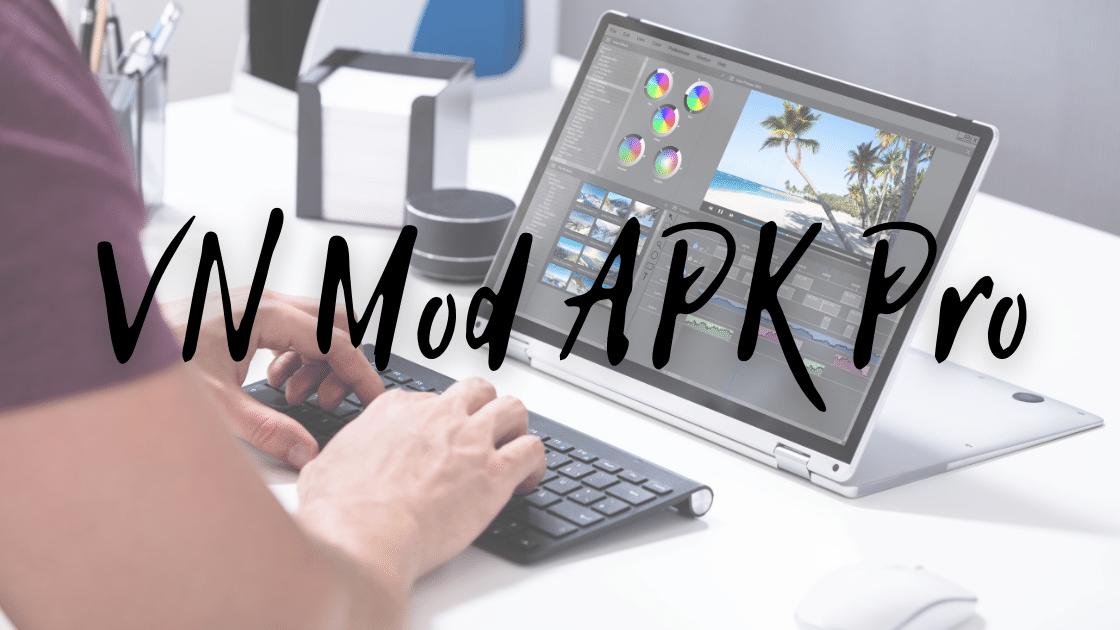 VN Mod APK Pro