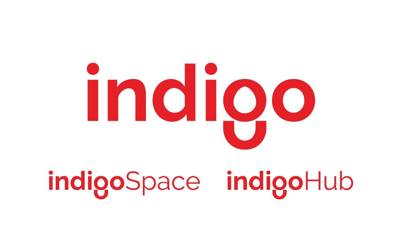 Indigo Rebranding